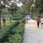 Walk in the park – walk of life