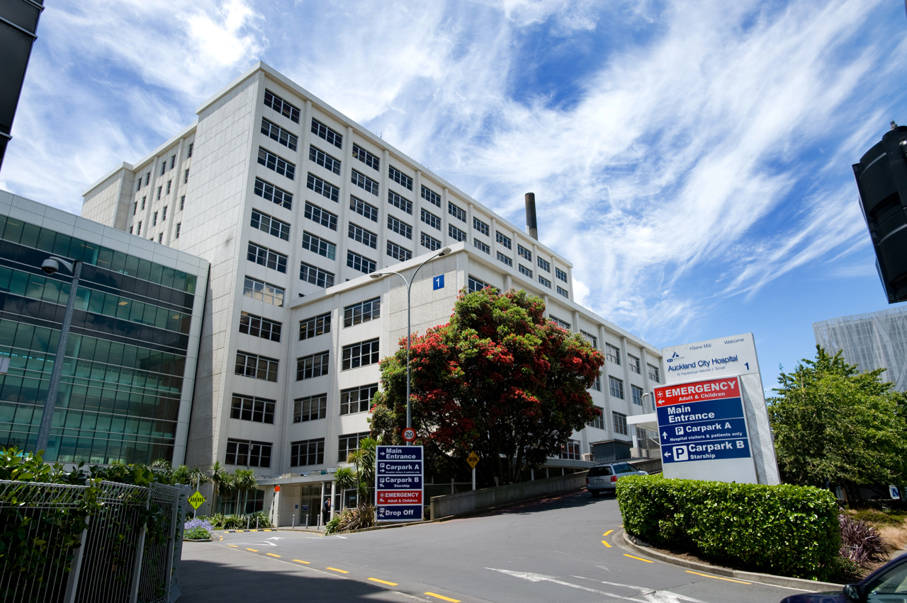 doctors shortage Auckland hospital